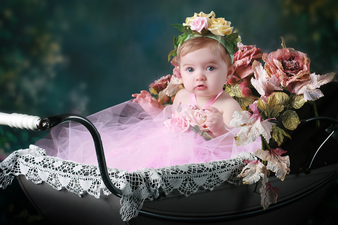 Old_English_Pram_with_Roses_Close_Up-s.jpg
