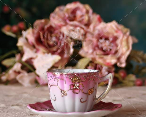 antique_italian_teacup_Baby_Photography_Props_Backdrops.jpg